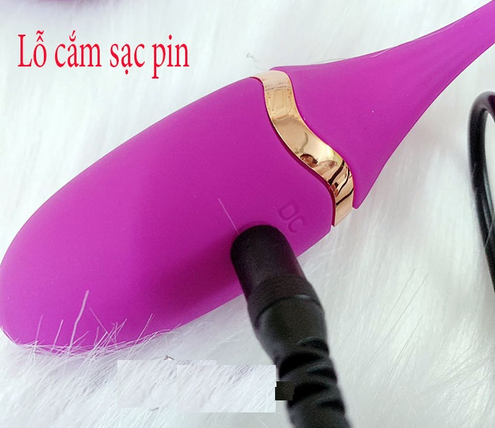 Hình ảnh chi tiết trứng rung không dây cá heo điều khiển siêu đẹp